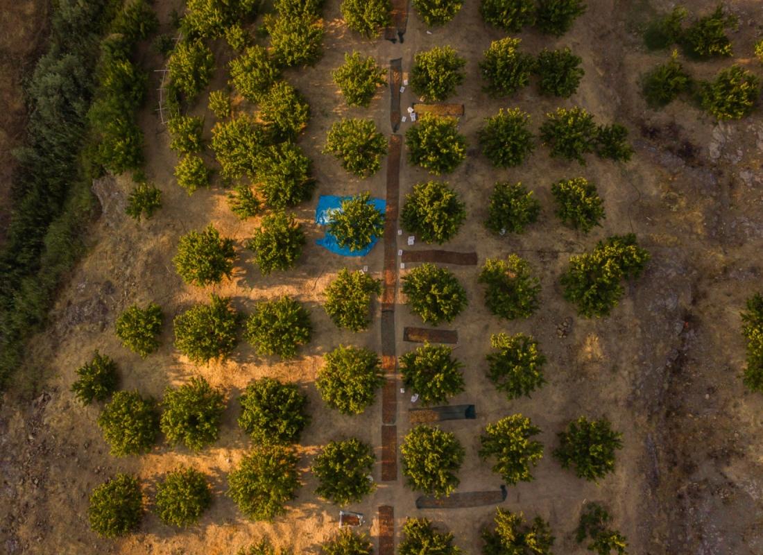 Vista delle piantagioni di albicocche sul distretto di Kale, dove il frutto sta per terminare l'essiccazione al naturale – Malatya, Turchia