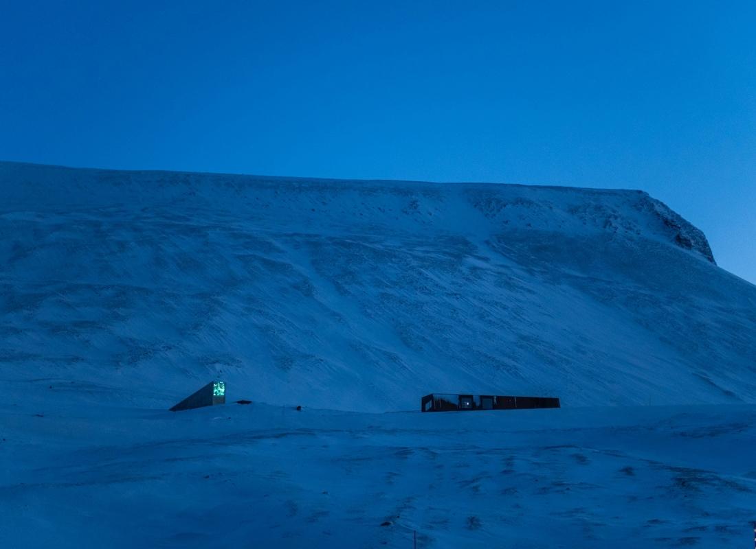Poco fuori dal paese, in cima a una collina, come in una piazza medievale, spicca a ogni ora del giorno e della notte la Svalbard Global Seed Vault. Come una cattedrale, simbolo sacro e profano di vita, contiene copie di sicurezza di migliaia di semi provenienti da tutto il mondo.  Per il futuro della Terra.