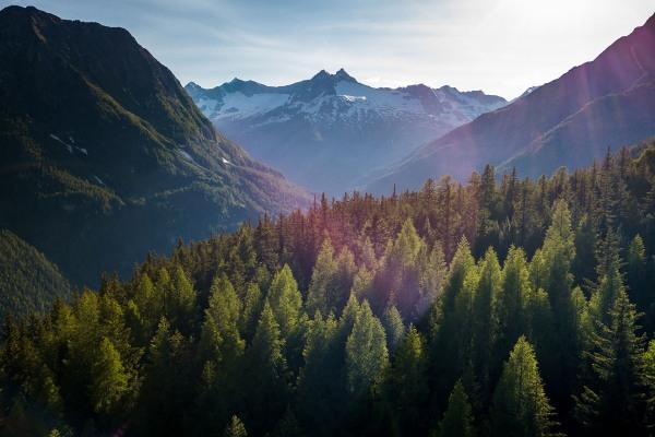 Valtellina expedition / Selvatiq