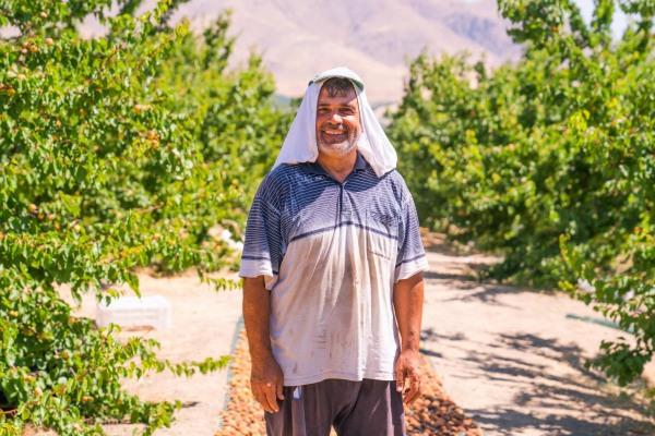 Apricots Farmer / Euro Company