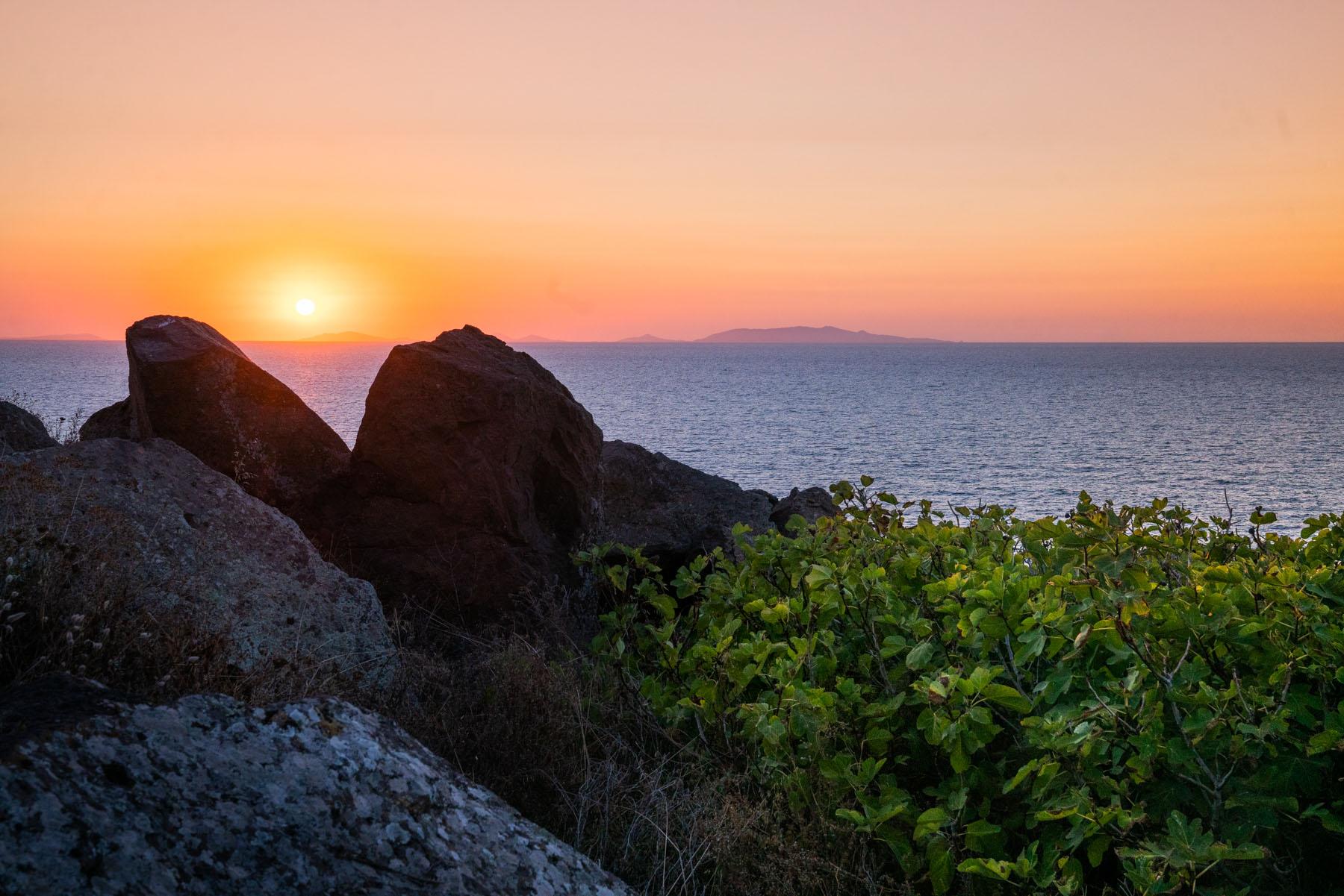 Soda Mediterranean Coast / Selvatiq
